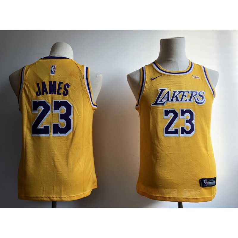 Camiseta 2018 Lebron James 23 morada Angeles Lakers